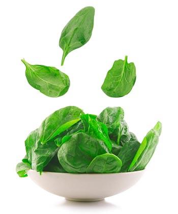 Slow Juicer Zutat Spinat - Chlorophyllhaltiges zum Entsaften