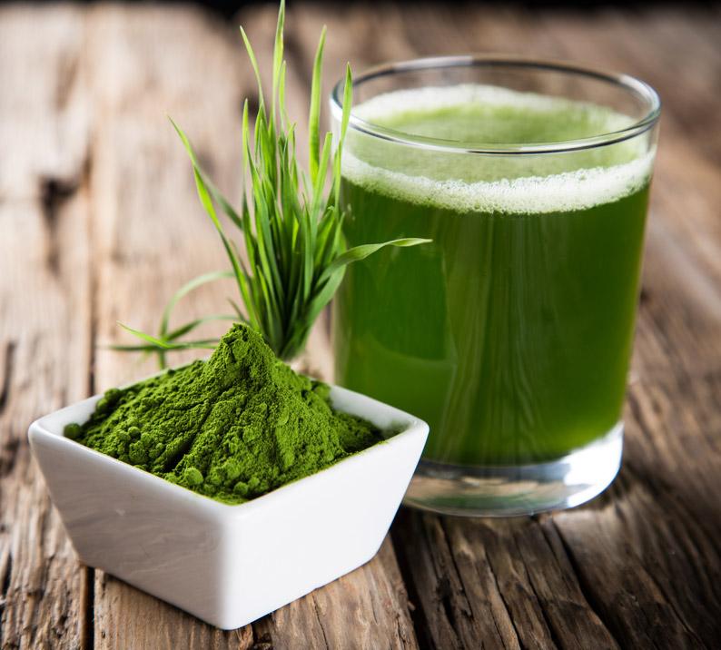 Gesunder Saft aus dem Slow Juicer mit Weizengras